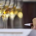 Felhívás szüreti borversenyre